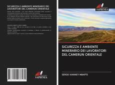 Borítókép a  SICUREZZA E AMBIENTE MINERARIO DEI LAVORATORI DEL CAMERUN ORIENTALE - hoz