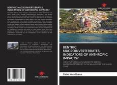 Bookcover of BENTHIC MACROINVERTEBRATES, INDICATORS OF ANTHROPIC IMPACTS?
