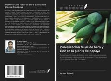 Portada del libro de Pulverización foliar de boro y zinc en la planta de papaya