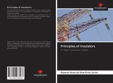 Bookcover of Principles of Insulators