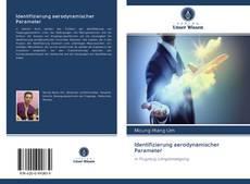 Buchcover von Identifizierung aerodynamischer Parameter