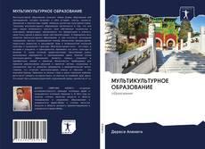 Copertina di МУЛЬТИКУЛЬТУРНОЕ ОБРАЗОВАНИЕ