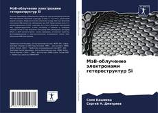 Copertina di МэВ-облучение электронами гетероструктур Si
