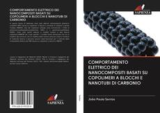 COMPORTAMENTO ELETTRICO DEI NANOCOMPOSITI BASATI SU COPOLIMERI A BLOCCHI E NANOTUBI DI CARBONIO kitap kapağı