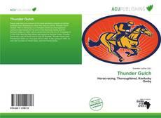 Capa do livro de Thunder Gulch