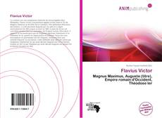 Bookcover of Flavius Victor