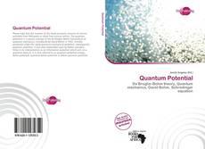 Bookcover of Quantum Potential