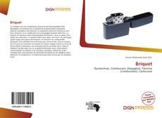 Bookcover of Briquet