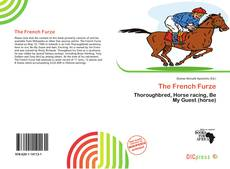 Bookcover of The French Furze