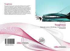 Bookcover of Toughness