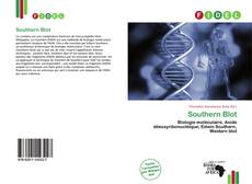 Bookcover of Southern Blot
