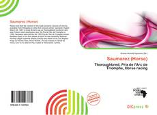 Bookcover of Saumarez (Horse)