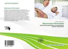 Portada del libro de Dépression Périnatale