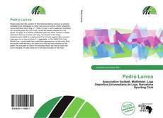Portada del libro de Pedro Larrea