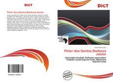 Обложка Peter dos Santos Barbosa Júnior
