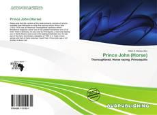 Buchcover von Prince John (Horse)