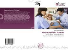 Bookcover of Accouchement Naturel