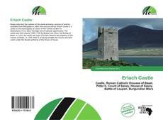 Portada del libro de Erlach Castle