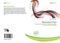 Borítókép a  Hydrostatic Fluid - hoz