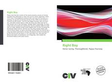 Bookcover of Right Boy