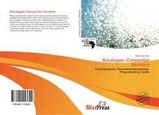 Keulegan–Carpenter Number的封面