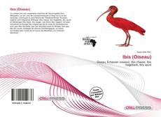 Обложка Ibis (Oiseau)