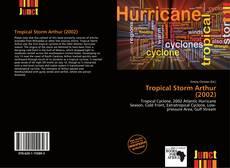 Capa do livro de Tropical Storm Arthur (2002)
