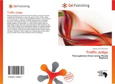 Bookcover of Traffic Judge