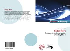 Couverture de Misty Morn