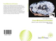 Couverture de Faux Minéraux et Fossiles
