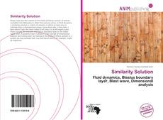 Bookcover of Similarity Solution