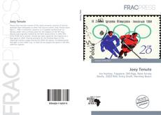 Bookcover of Joey Tenute