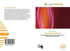 Bookcover of Touchstone (Horse)