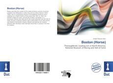 Bookcover of Boston (Horse)