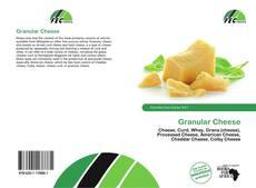 Granular Cheese的封面