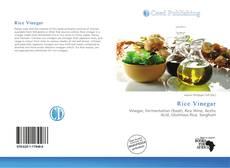 Borítókép a  Rice Vinegar - hoz