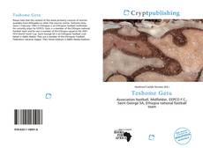 Bookcover of Teshome Getu