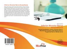 Inferior Alveolar Nerve Anaesthesia的封面