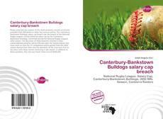 Bookcover of Canterbury-Bankstown Bulldogs salary cap breach