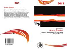 Bookcover of Bruno Šundov
