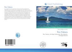 Bookcover of Îles Tokara