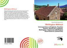 Bookcover of Wellington Without