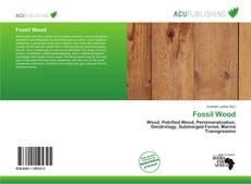 Bookcover of Fossil Wood
