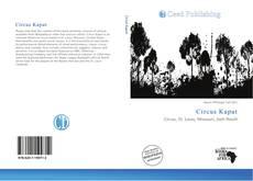 Bookcover of Circus Kaput