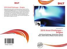 Copertina di 2010 Arad Challenger – Singles
