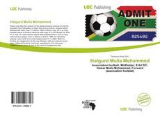 Portada del libro de Halgurd Mulla Mohammed