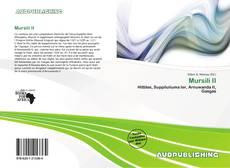 Mursili II kitap kapağı
