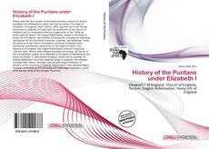 Bookcover of History of the Puritans under Elizabeth I