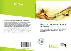 Buchcover von Borussia Dortmund Youth Academy