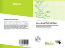 Bookcover of Amadeus Wallschläger